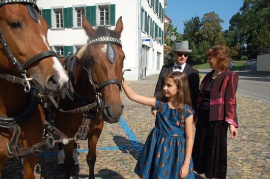 Foto Geduldig warten die Pferde auf die Weiterreise nach Olten
